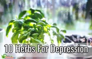 herbal depression irritability picture 3