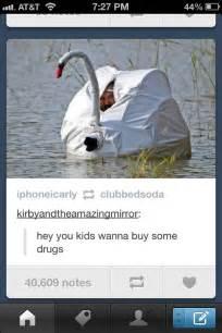 vigorelle drug picture 5