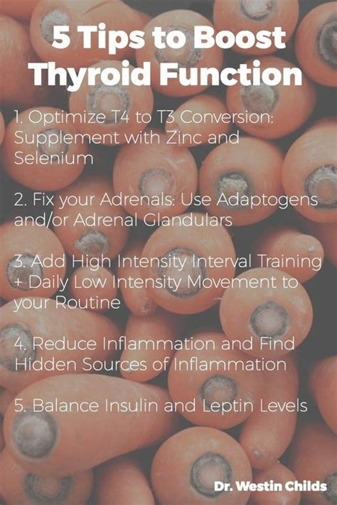 can levothyroxine and armour thyroid be taken together picture 10