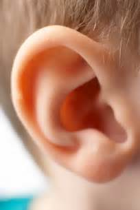 can hypothyroidism cause ear infections in children picture 11