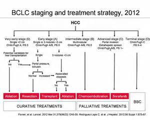 liver cancer staging picture 10