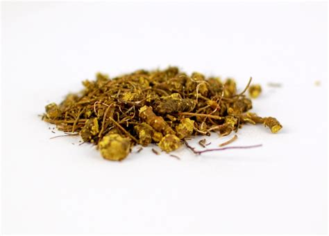 goldenseal herb for tooth infection picture 3
