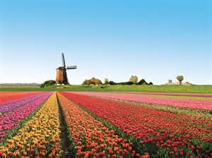 holland picture 2