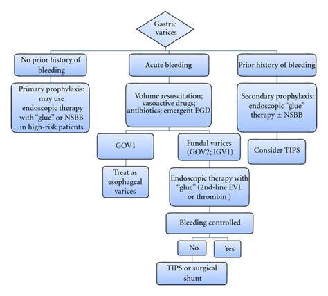 androgen receptor blockers herbs picture 6