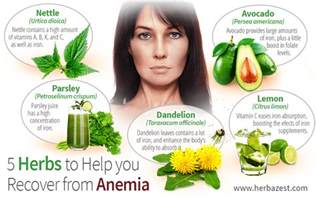 herbs that help your appee picture 1