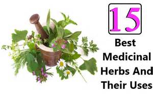 herbal medicines and their cures picture 21