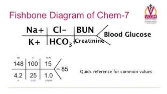 chem panel liver function picture 7