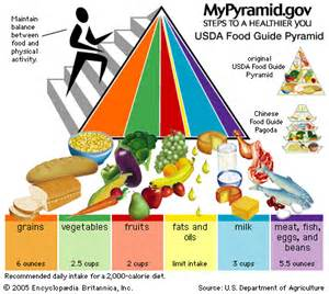 2005 dietary guidelines picture 11