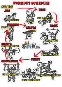 full body muscle building workouts picture 11