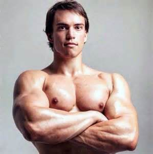 anton muscle picture 10