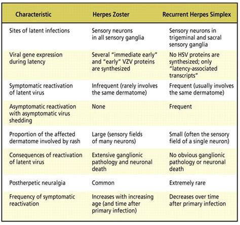 differences between herpes zoster and herpes simplex picture 1
