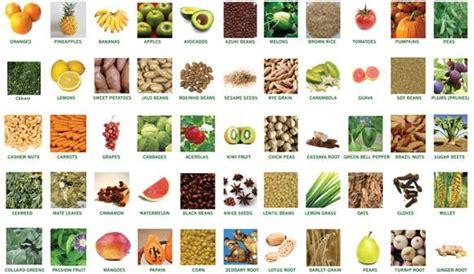 probiotic food list picture 10
