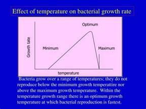 microbial growth occurred only at the temperatures picture 2