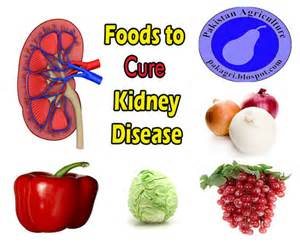 diet snacks for kidney picture 6