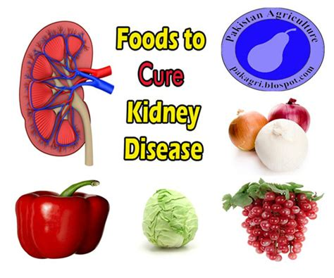 what are the foods that helps to cure picture 10