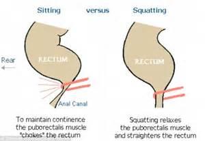 bowel movement problems picture 3