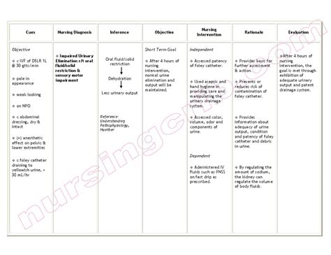 nursing care plan for urinary retention picture 1
