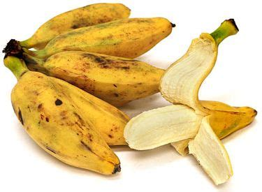 trinidad men size penis picture 5