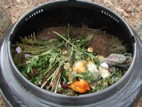compost piles picture 5