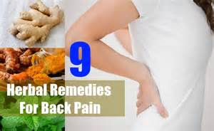 herbal remedies for back pain picture 1