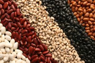 healthy beans picture 1