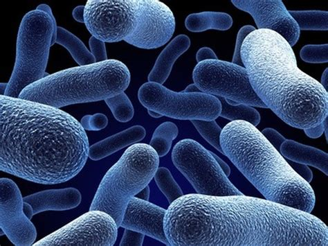 role of water in microbial growth picture 8