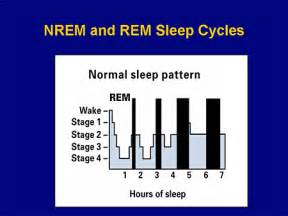 non rem sleep picture 5