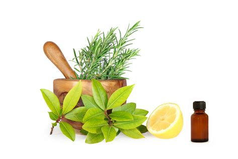 herbal medicine para s sikmura picture 5