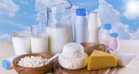 breast feeding weight loss picture 11