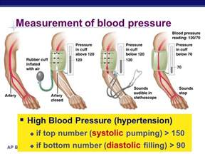 systolic and diastolic and pluse numbers in blood pressure picture 6