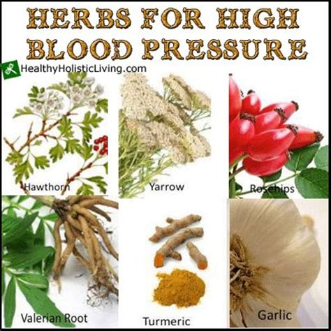herbal remedies for high blood pressure picture 3