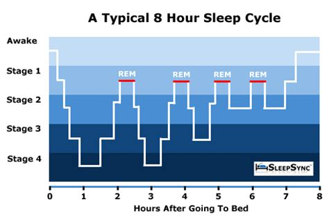 cycles of sleeping picture 9