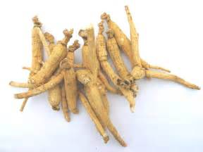 is panax ginseng good for herpes picture 1