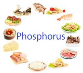 low phospate diet low oscilate diet picture 2