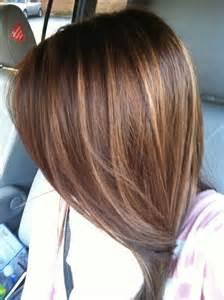 dark brown hair caramel highlights picture 6