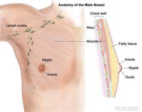 breast enhancement under muscle picture 5