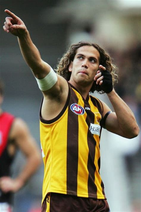 mark williams hawthorn picture 3