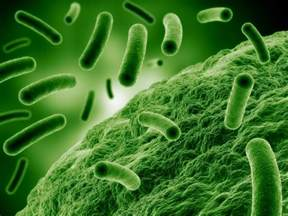 antimicrobial picture 6