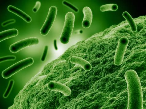 antimicrobial picture 11