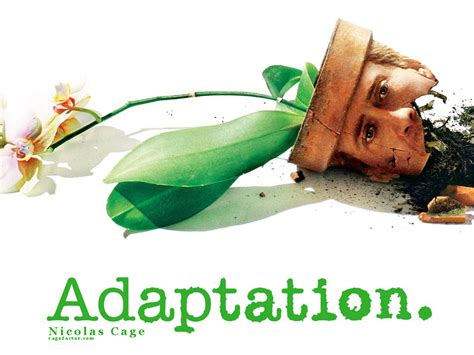 adaptation picture 1