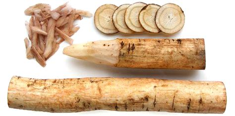 fresh burdock root for sale sydney picture 2