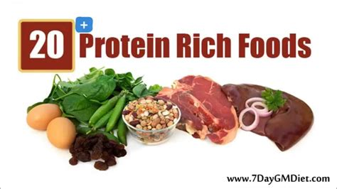 all protein diet picture 10
