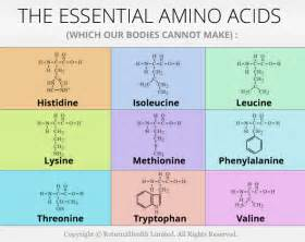 9 essential amino acids and dietary source chart picture 1