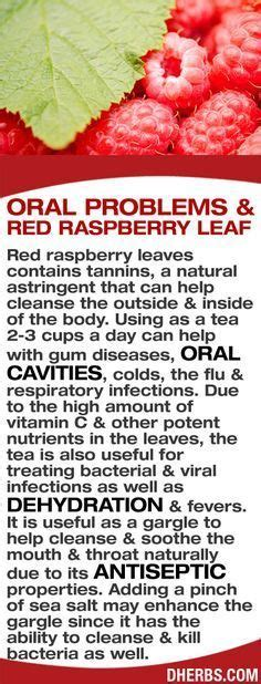 red raspberry leaf tea for yeast infection picture 2