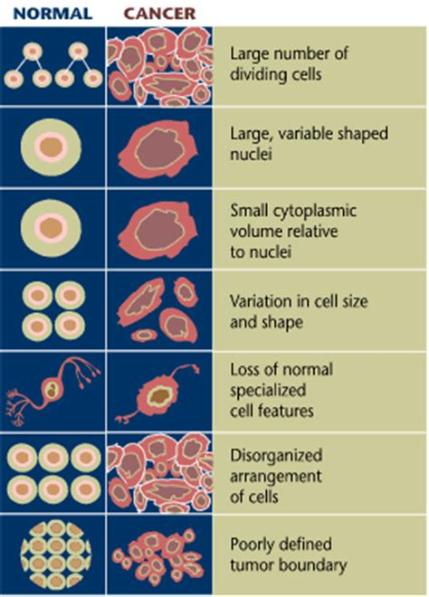 signs colon cancer picture 7