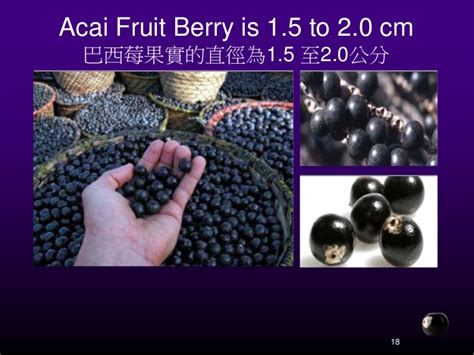 acai berry pulp picture 3