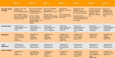 a perfect diet plan for me picture 11