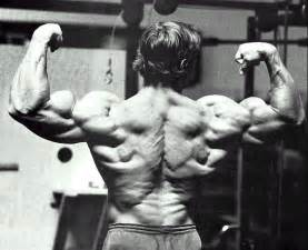 arnold schwarzenegger muscle pictures picture 9