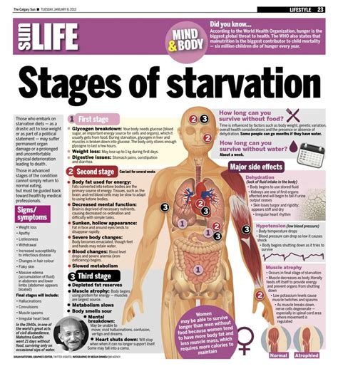starvation weight loss methods picture 3