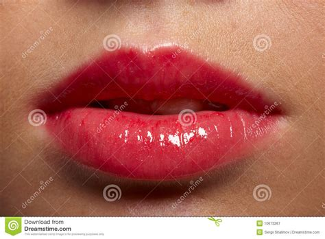 free fat lip pictures picture 2
